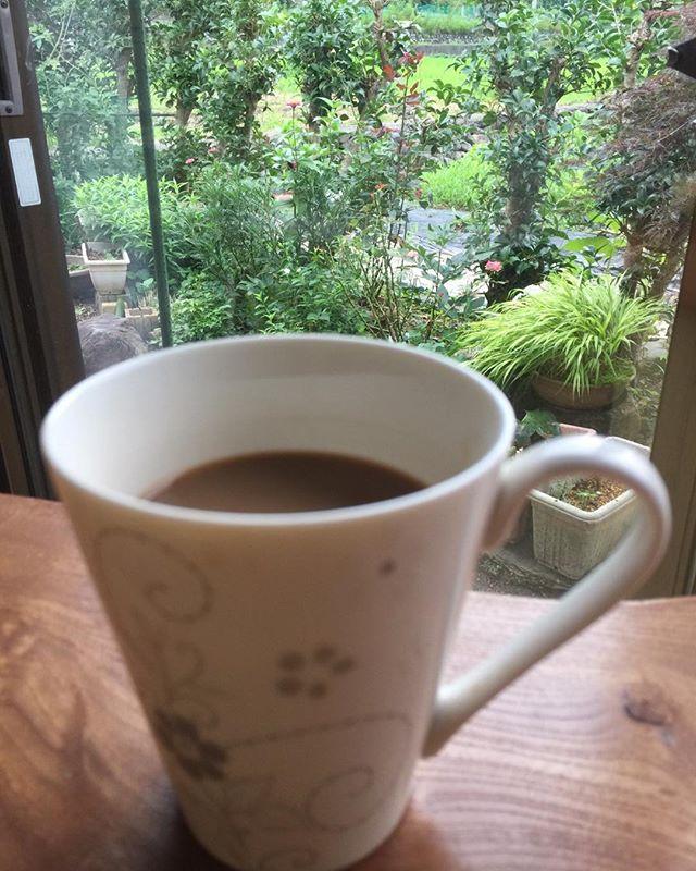 夏の朝の空気はまだ涼しくコーヒータイムもオツなもの