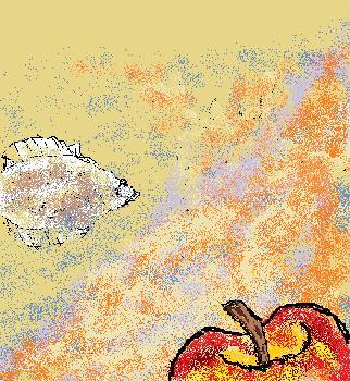 ひらめとりんご