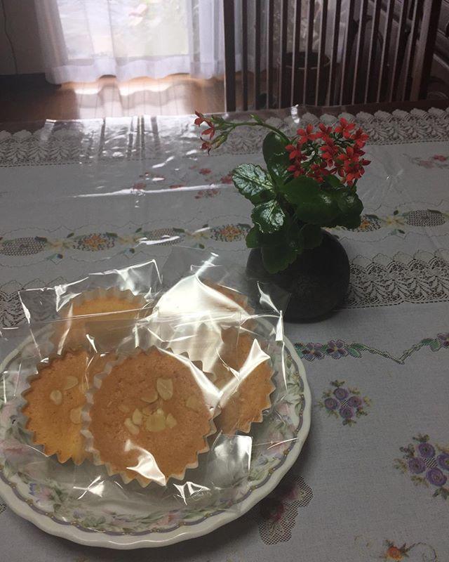 主人の退院お祝いに近所の美しき女性から手作りのお菓子をプレゼントです